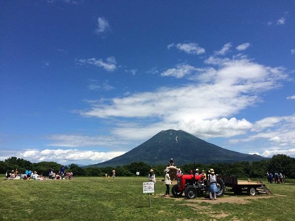 夏の羊蹄山