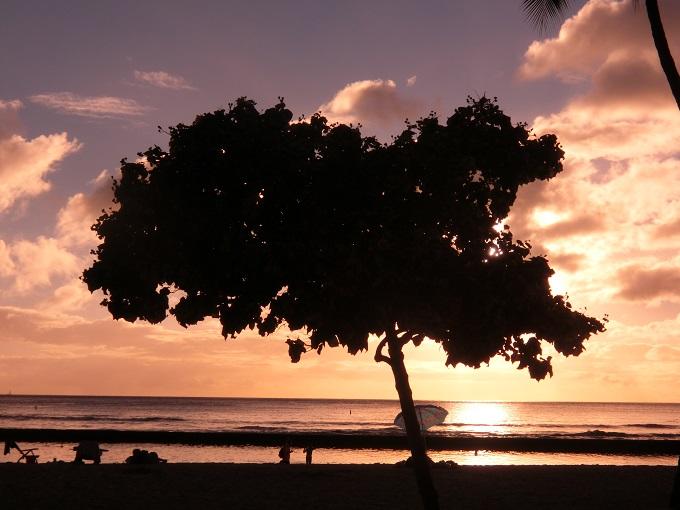 ハワイ個人旅行滞在記6:ローカルグルメと新婚旅行気分