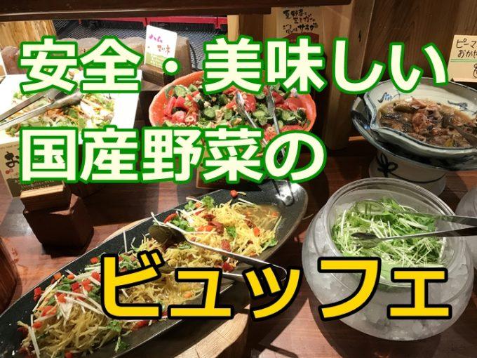 名古屋駅のオススメランチビュッフェ、おいしい野菜がたくさん食べられるレストランモクモク
