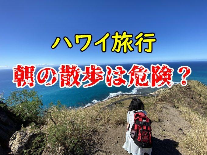 【動画】ハワイ、朝のランニング、ウォーキングは危険?最適な服装は?