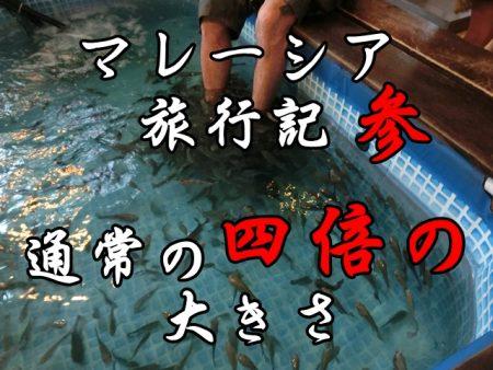マレーシア観光3:オススメすぎるマダムクワンのナシレマと恐怖の魚