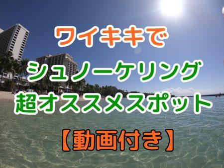 【無料】ハワイでシュノーケリング|子供・泳げないでも安全な場所を動画で紹介