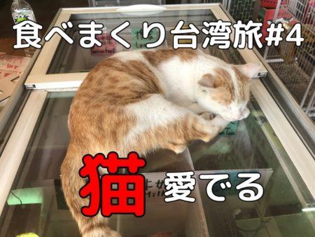 台湾旅行記4:十分でランタン上げと猫村初体験、九份まで行く元気は無かった