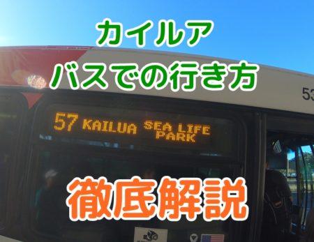 カイルア、バスでの行き方解説と所要時間メリット・デメリットを比較