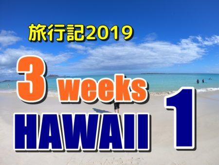 ハワイ旅行記2019:1、入国審査が厳しくなって混雑もひどくなってた