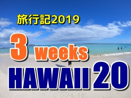 ハワイ旅行記:ワイキキビーチでクラゲに遭遇と美味いステーキ選