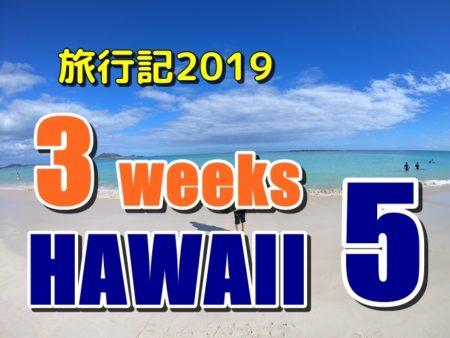 ハワイ旅行記5、3週間滞在して一番美味しかったハワイグルメは?