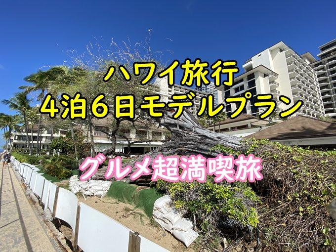 【動画有】ハワイ4泊6日モデルプラン|グルメ満喫とハワイ感100%旅