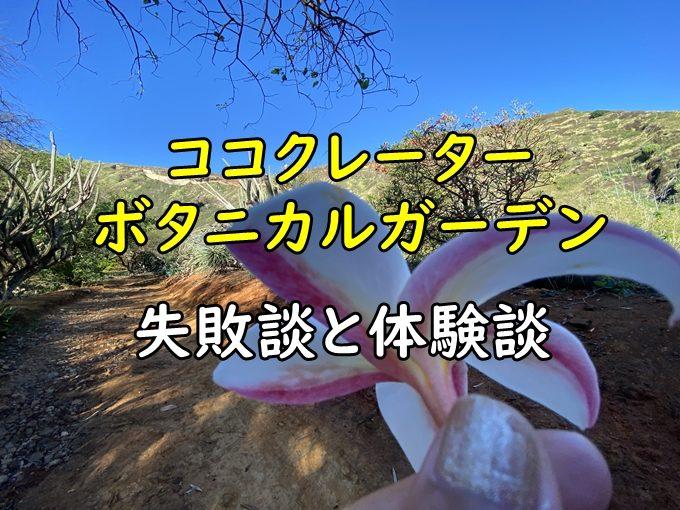 【失敗談】ココクレーター植物園の行き方解説とブログに口コミを書く
