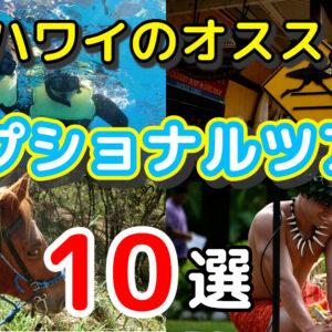 【10選】ハワイマニアがガチで選ぶオススメのオプショナルツアー